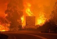 آتشسوزیهای جنگلی در پرتغال ۲۵ قربانی گرفت