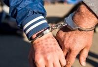 دستگیری ۱۴۵ سارق و زورگیر در پایتخت/افزایش گشتهای پلیس در تفرجگاهها و پارکهای پایتخت