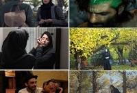۶ فیلم ایرانی در جشنواره دوربان آفریقای جنوبی