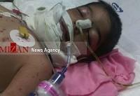کودک ۳ ساله سنقری بر اثر حمله گرگ به کما رفت