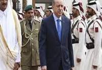 رئیس جمهوری ترکیه با امیر قطر دیدار و گفتگو کرد