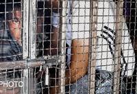دستگیری ۶۱۲ خرده فروش مواد مخدر در طرح ضربتی پلیس