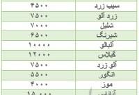 پیاز اشک خریداران را درآورد/ ثبات قیمت میوه در بازار+ جدول