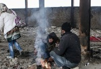 چند درصد ایرانیها به مخدر تمایل دارند؟