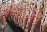 تلفات تب کریمه کنگو به ۵ نفر رسید/ خوردن گوشت عامل انتقال بیماری نیست