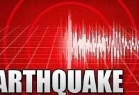 زمینلرزهای با قدرت ۶.۵ ریشتر اندونزی را لرزاند