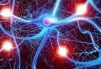 درمان «تیک عصبی» با طب سنتی/شیوه درست پولیش خودرو/علم دویدن/مصرف نجومی آب برای تولید یک همبرگر