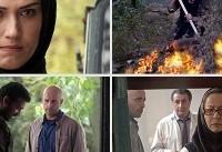 «ماه در جنگل» در گروه آزاد اکران میشود/ ادامه اکران سایر فیلم ها