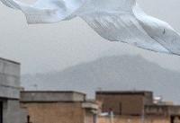 وزش شدید باد در نوار شرقی کشور/ بارش باران در استانهای شمالی