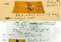 عکس/ اولین باگ سیستم های کامپیوتری را ببینید!