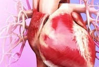 ۱۰ درصد موارد درد قفسه سینه کودکان مربوط به مسائل قلبی است