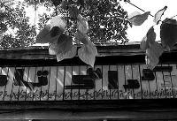 داریوش تهامی، صاحب عکاسخانه تهامی درگذشت/ بساط خاطره تهران از بهارستان جمع میشود