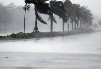 عملیات گسترده امدادی در فلوریدا آغاز شد/محروم شدن ۶.۵ میلیون نفر از برق