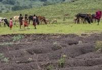 فرسایش شدید یک سوم خاک زمین