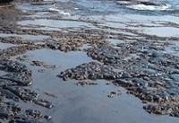 براثر غرق شدن یک کشتی یونانی حدود ۲۰۰ تن نفت سیاه در سواحل آتن به دریا ریخته شد