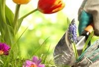 باغبانی و این همه فایده برای سلامتی!!