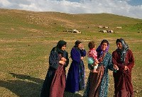 آغاز طرح سرشماری زنان ایرانی دارای همسر غیر ایرانی در استان تهران