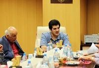 برگزاری جلسه شورای فنی تیمهای ملی کشتی آزاد