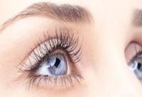 ۱۰ گیاه مفید برای چشم را بشناسید