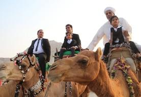 آلبوم تصویری: مراسم جالب سنتی عروسی داماد شترسوار در قشم