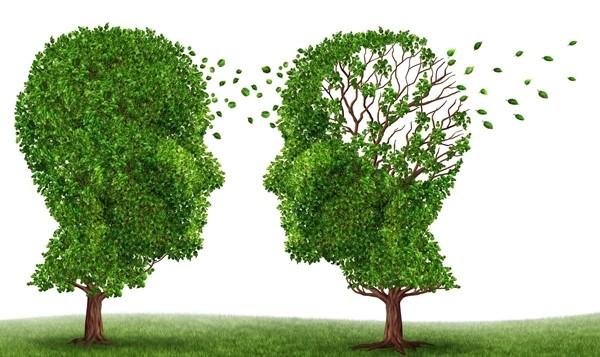 چه داروهایی و عواملی موجب ضعف حافظه میشوند؟