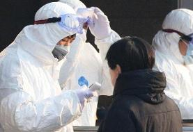اپل تمامی دفاتر و فروشگاههای خود در چین را به خاطر شیوع ویروس کرونا تعطیل کرد