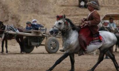 فستیوال فیلمهای ایرانی در بوستون: فیلم اسب دو پا ساخته سمیرا مخملباف
