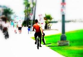 دوچرخه سواری دانشجویان ایرانی دانشگاه اتاوا