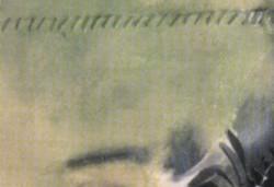 نمایشگاه آثار نقاشی آهو حامدی
