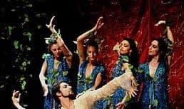 هنرنمایی رقص شاهرخ مشکین قلم و نکیسا با اشعار عمر خیام