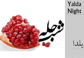 Yalda Celebration with Iranian ۵۰+ Association