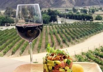 Fazeli Winery Special Event: ...