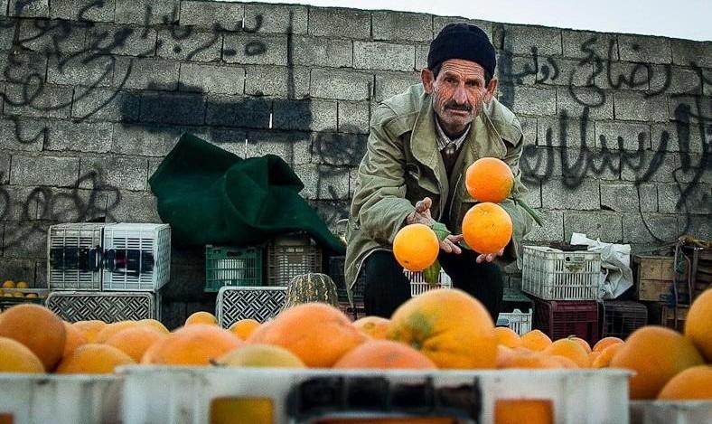 پرتقال خارجی کیلویی ۳۹۰۰ تومان/ مردم گرانفروشان را معرفی کنند!