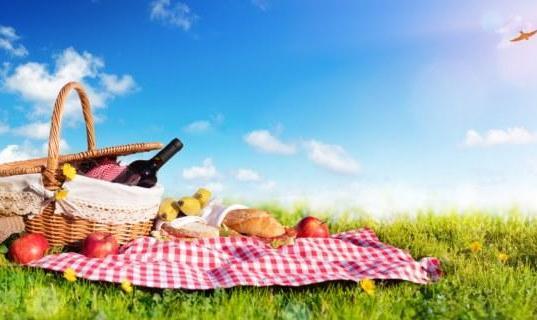 پیک نیک تابستانی ایرانیان در کانتیکات
