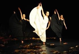 اجرای رقص توسط گروه Les Ballets Persans در جشنواره تیرگان