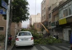 امروز در تهران منتظر تندباد لحظهای باشید