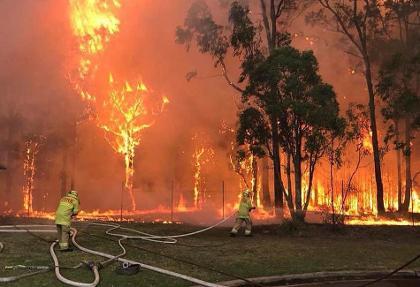 دولت استرالیا در حال حاضر توان مقابله با آتش سوزی های شمال غرب سیدنی را  ندارد! ویدئوی اَبَر حریق