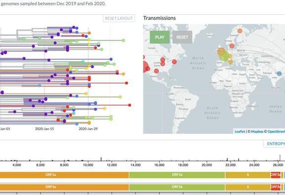 اولین نمودار زنده جالب جهش ژنتیکی ویروس کووید-۱۹