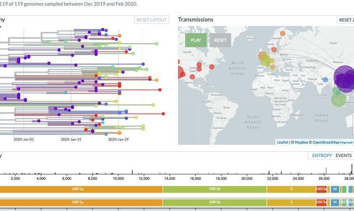 Chart: Evolution and Genomic Epidemiology of Novel Coronavirus ...