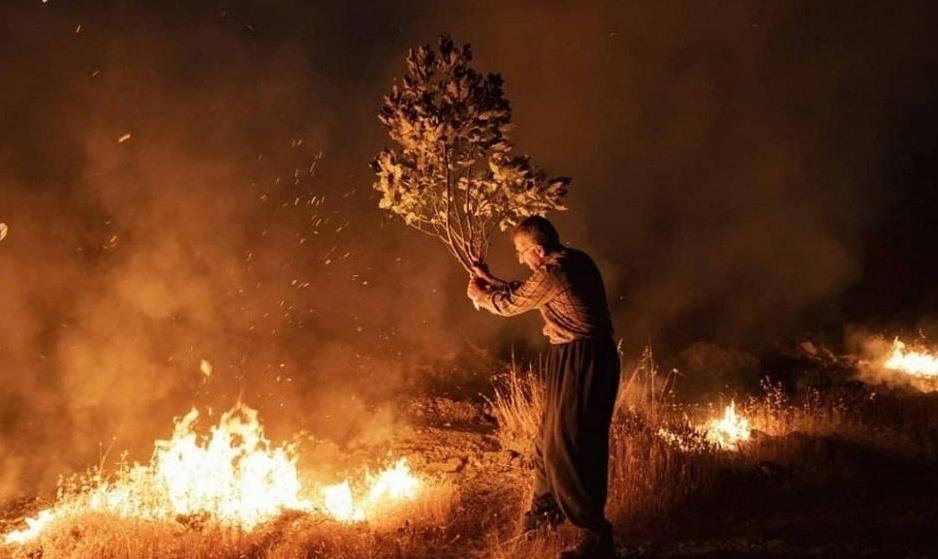 تصاویر: پس از هشت روز تلاش نیروهای محیط زیست، شهرداری ها و آتش نشانی ها آتش جنگل های پاوه مهار شد
