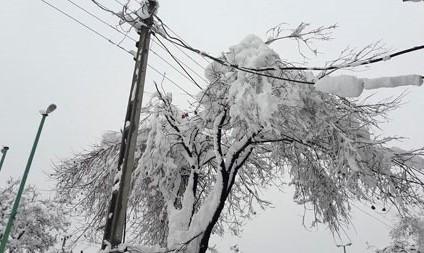 قطعی گسترده آب و برق و گره خوردن ترافیک در کرج در پی بارش برف