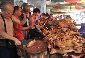درخواست مقامات ویتنام از ساکنان هانوی:گوشت سگ نخورید