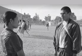 از رکوردشکنی سینماگر مکزیکی تا درخشش فیلمسازان گمنام: تحسین شده ترین فیلم های جهان توسط منتقدان و جشنواره ها