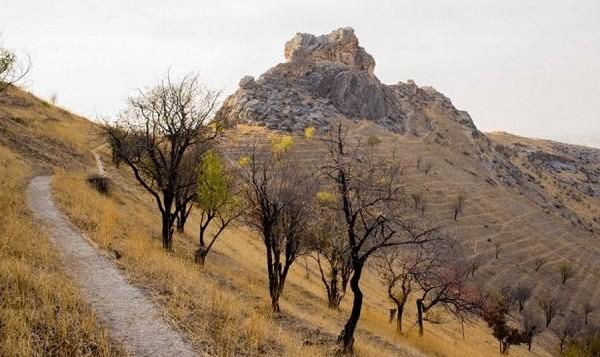 باستان شناسان موسسه مذهبی آمریکایی: بقایای کشتی نوح در ایران ...
