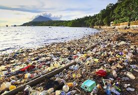 نبرد جهانی با کیسه های پلاستیکی
