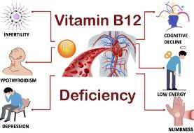 آشنایی با عوارض کمبود ویتامین B۱۲ و رژیم غذایی کاملا گیاهی