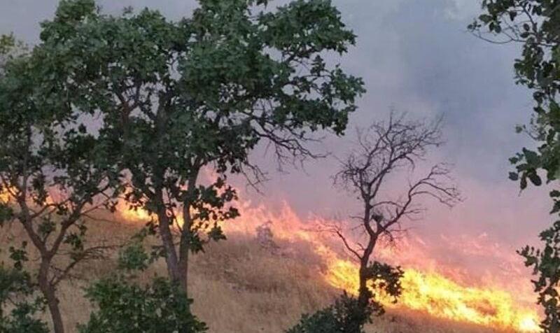 اعزام یک گردان ارتش برای مهار آتشسوزی به جنگلهای خسرج خوزستان