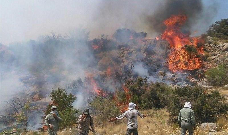 یگان حفاظت محیط زیست: تهسیگارها بارها باعث آتشسوزی مراتع شده