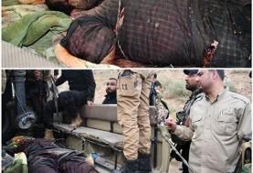 سپاه پاسداران: ابوضحی طراح اصلی حمله اهواز در عملیات غافلگیرانه در استان دیاله عراق کشته شد