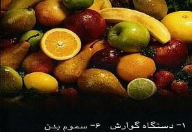 سخنرانی دکتر محمد ابوالفضلی درباره ترکیبات مختلف غذایی